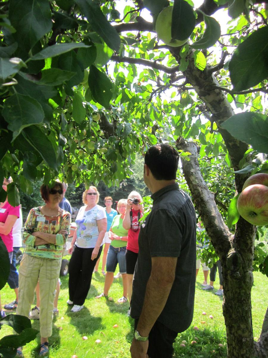 volunteers learning about fruit trees
