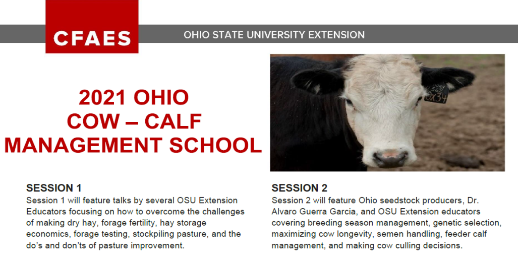 2021 Ohio Cow-Calf Management School with picture of cow