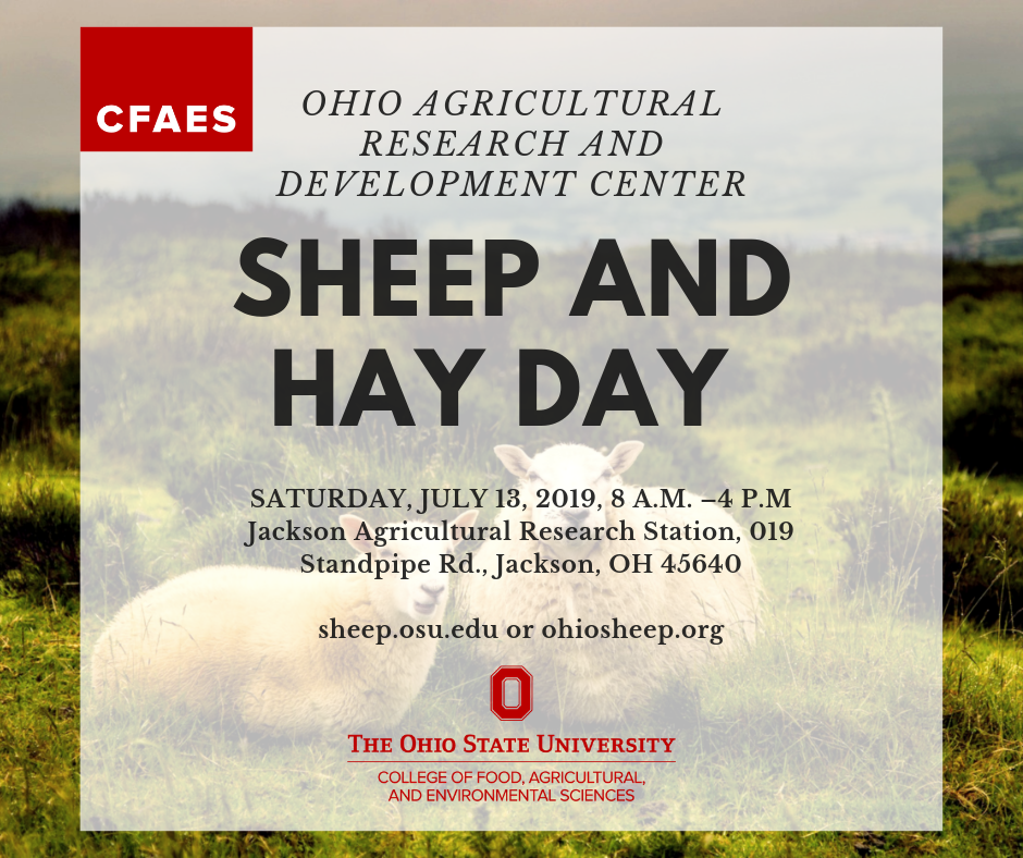 OHIO AGRICULTURAL RESEARCH AND DEVELOPMENT CENTER, OHIO SHEEP AND HAY DAY SATURDAY, JULY 13, 2019, 8 A.M. –4 P.M., Location: Jackson Agricultural Research Station, 019 Standpipe Rd., Jackson, OH 45640 , sheep.osu.edu or ohiosheep.org. Image of two sheep laying in grass