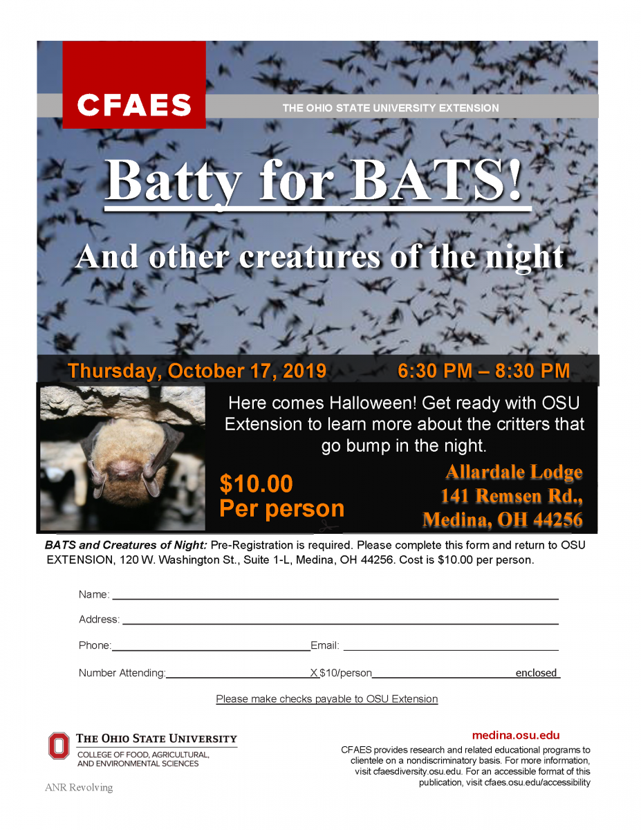 batty for bats registration flyer